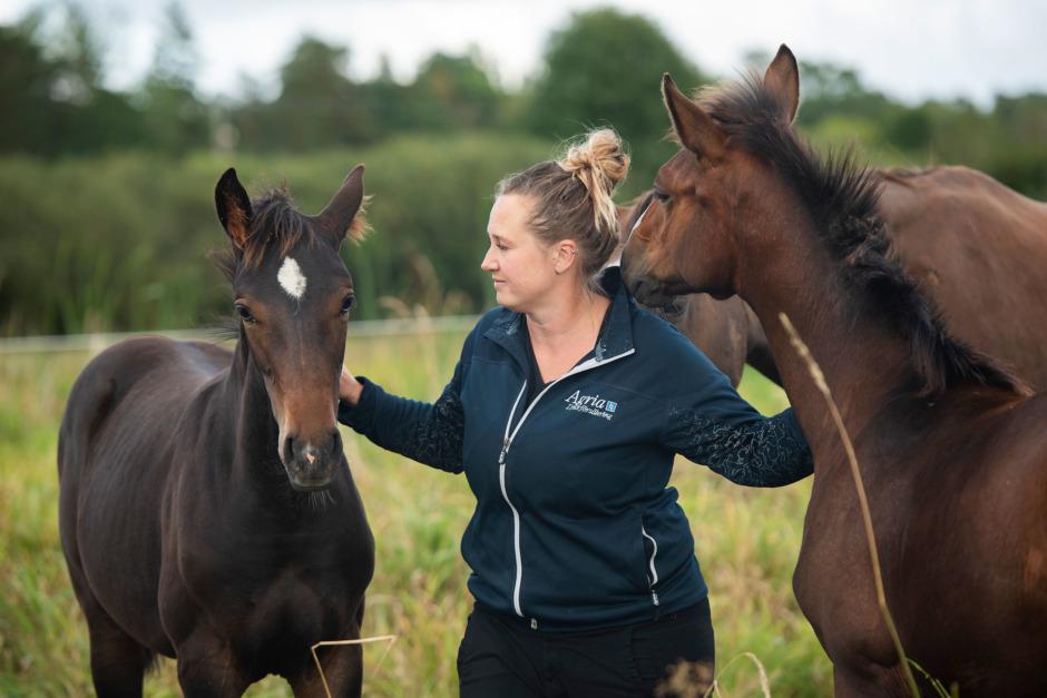 """""""Jag föder upp de hästar jag tror på"""""""