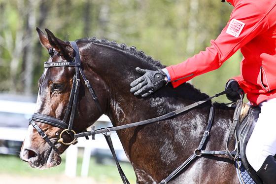 Majvisning på Hästak