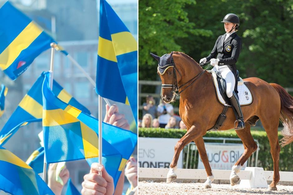 EM-brons till Sveriges young riders