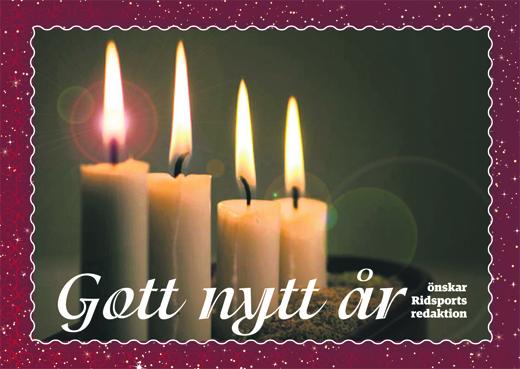 Ridsport önskar Gott nytt år!