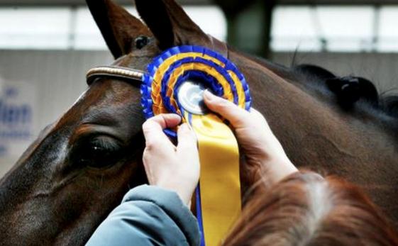 Ändrade regler för tävling berör medhjälpare och prisutdelningar