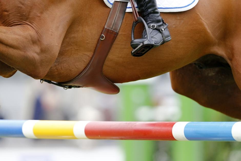 """""""Man behandlar för att tävla – inte för att hästen ska läka"""""""