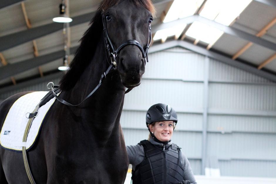 Köpa oinriden häst – elitryttare tipsar