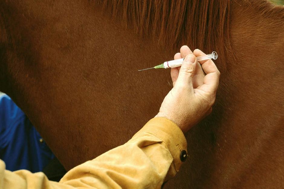 Förbundet skärper vaccinationskraven