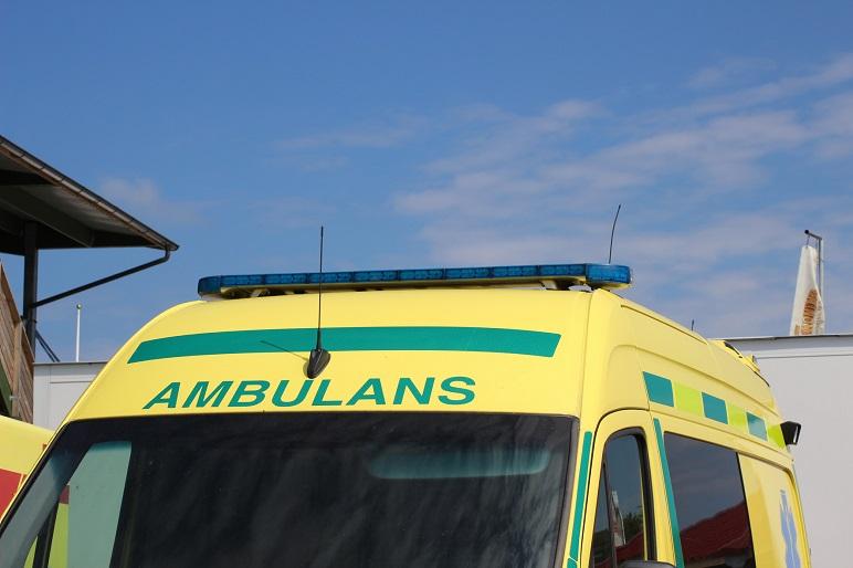 Flera till sjukhus efter hästolycka