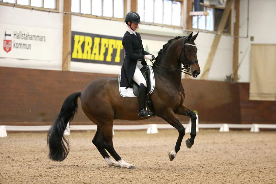 Svensk dressyrsuccé på Tallinn Horse Show