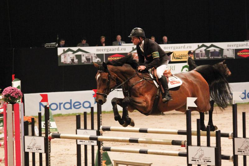 Dansk häst hos Rolf-Göran