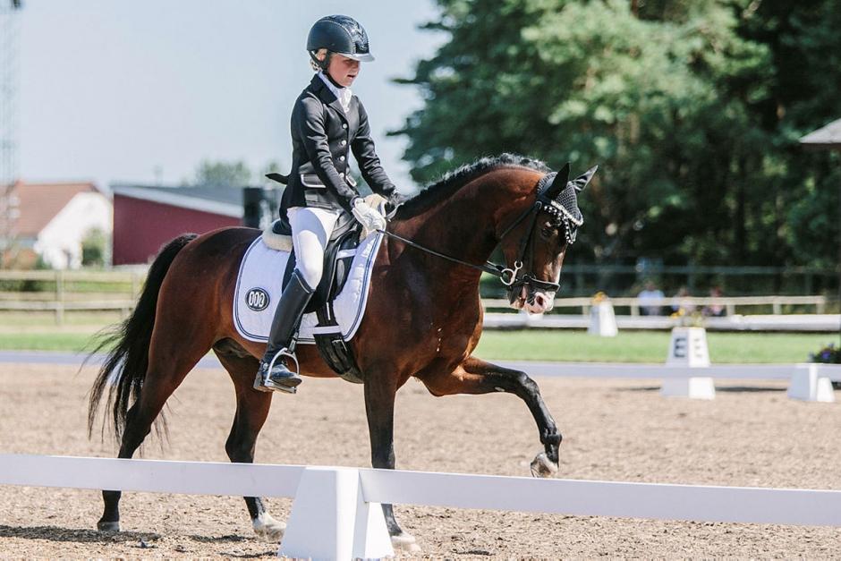 Tre segrar på 70 plus för svenska mästarna