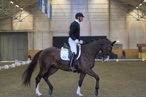 16 hästar med chans till UVM