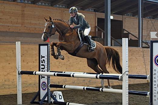 Hopphästarna bäst i Laholm