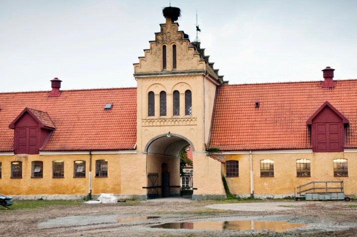 Många nyheter på Flyinge och Strömsholm