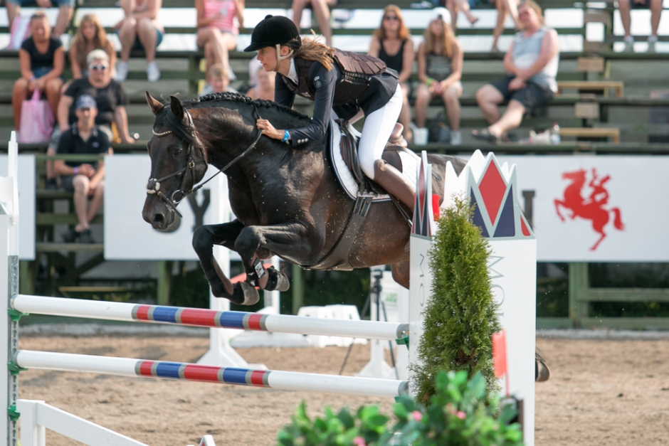 Ny häst till Peder Fredricson