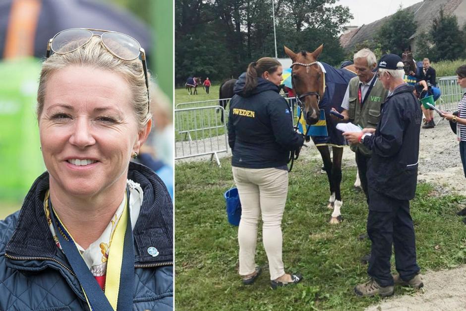Grönt ljus för de svenska EM-hästarna