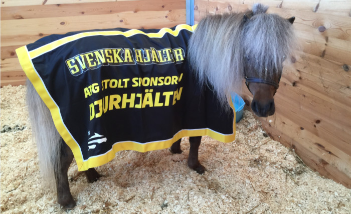 Nu ska Sverige få en djurhjälte