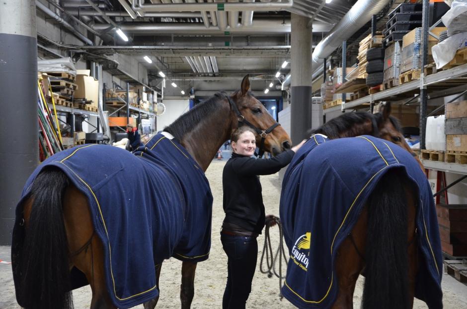 """""""Alla hästar får massage på morgonen"""""""