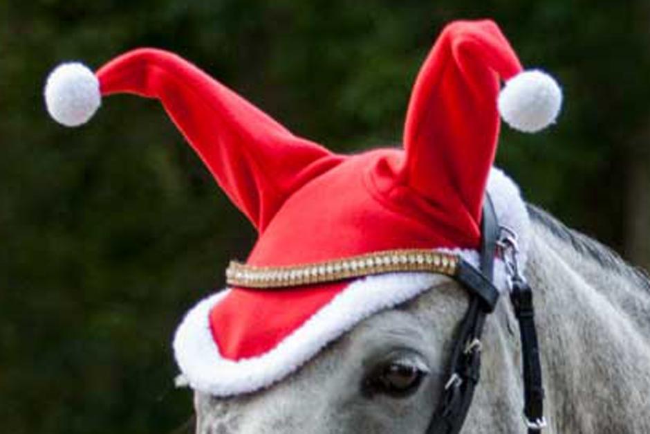 Gör hästen julfin med söta prylar