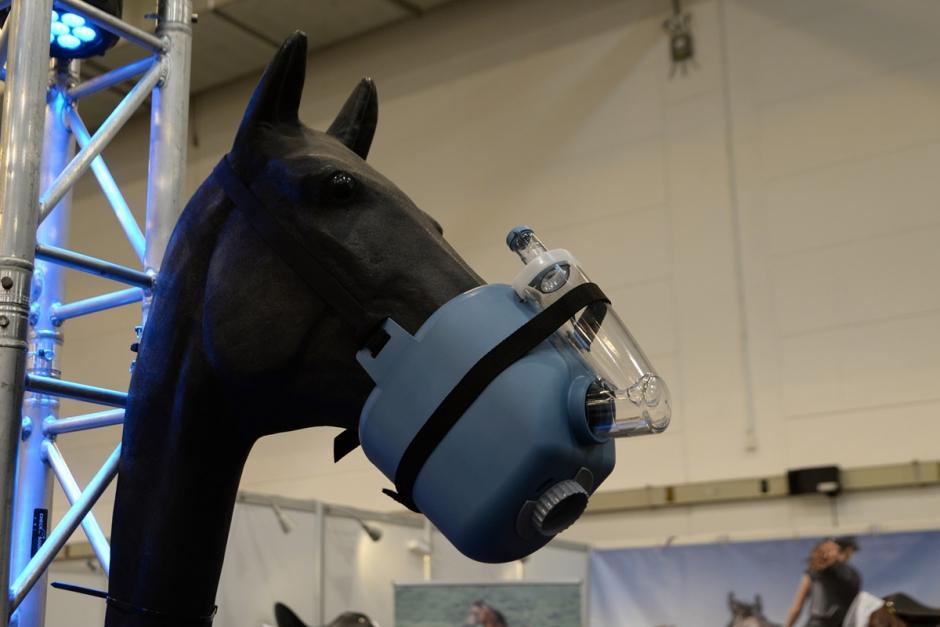 Mänskliga hästkurer säljs in på Equitana