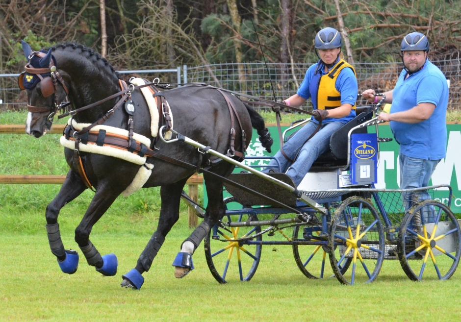 Mer körsport i Falsterbo