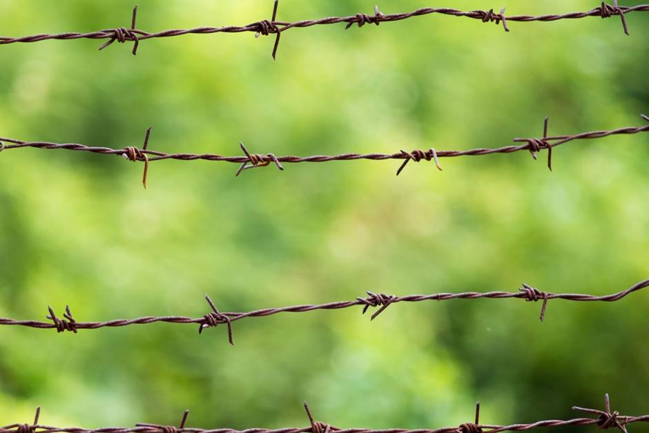 Hade taggtråd som staket – får betala vite
