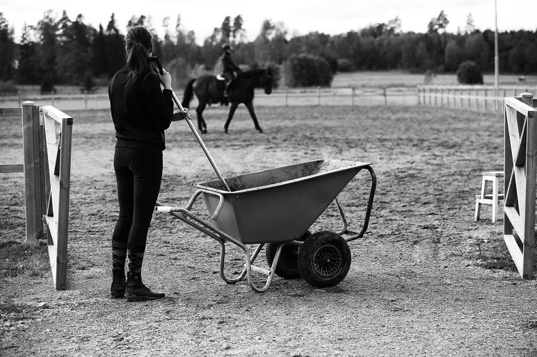 Hästskötare får skadestånd