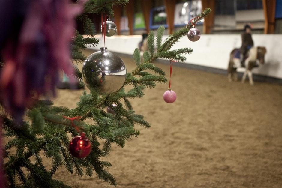 Tips för en säkrare jul i stallet
