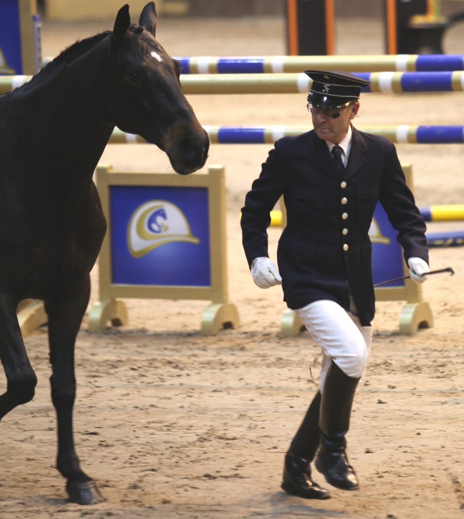 Hästshow i Kungsträdgården