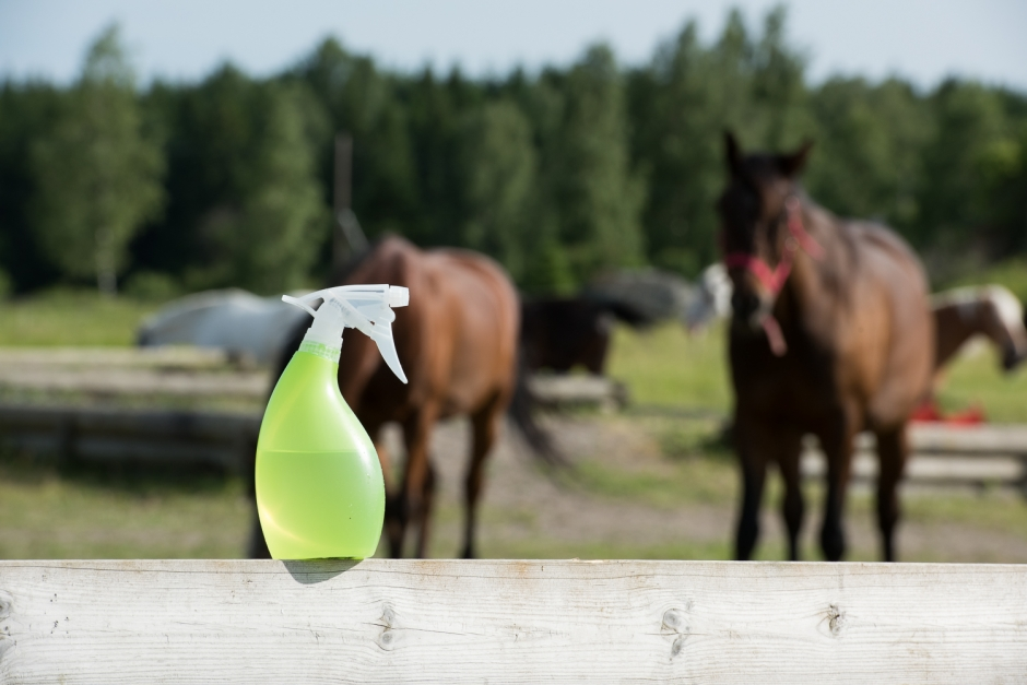 Tillverka din egen flugspray