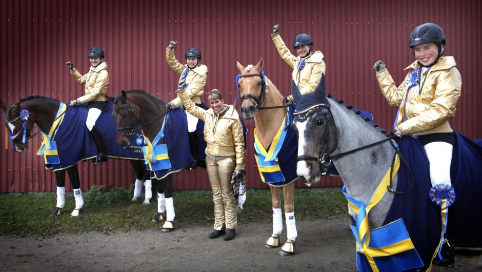 Anette Svanberg tar över ponnydressyren