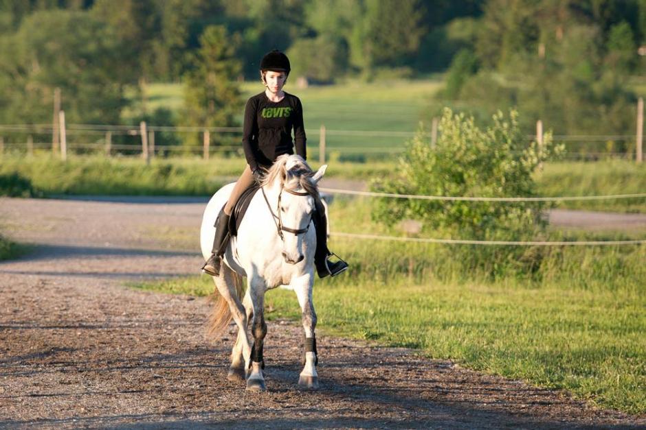 Sätt igång din häst efter betet