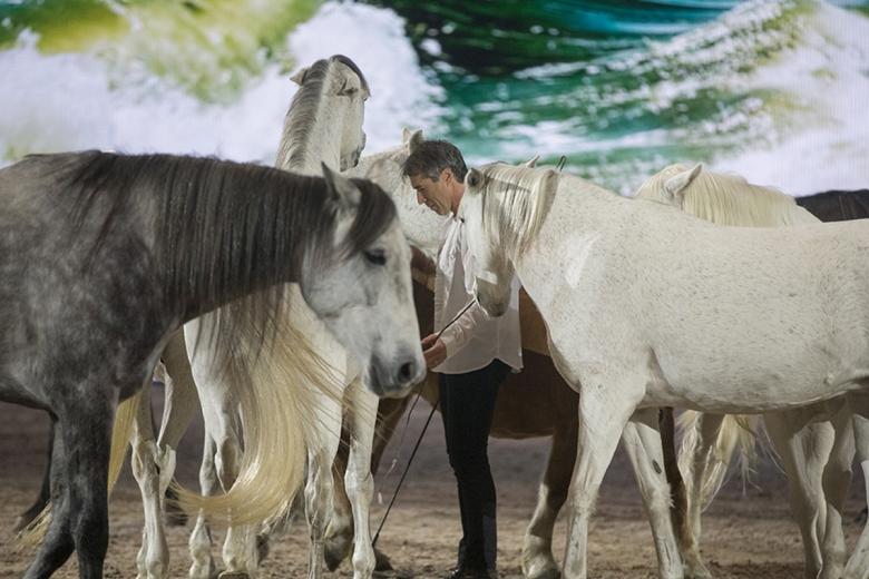 Pignon och hans flock intog are